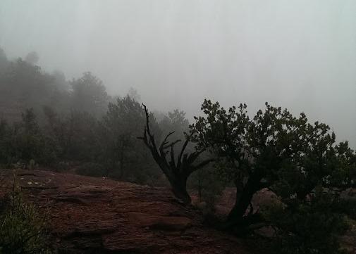 Fog in Sedona