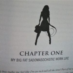 Image from The Corporate Dominatrix by Lisa Robyn